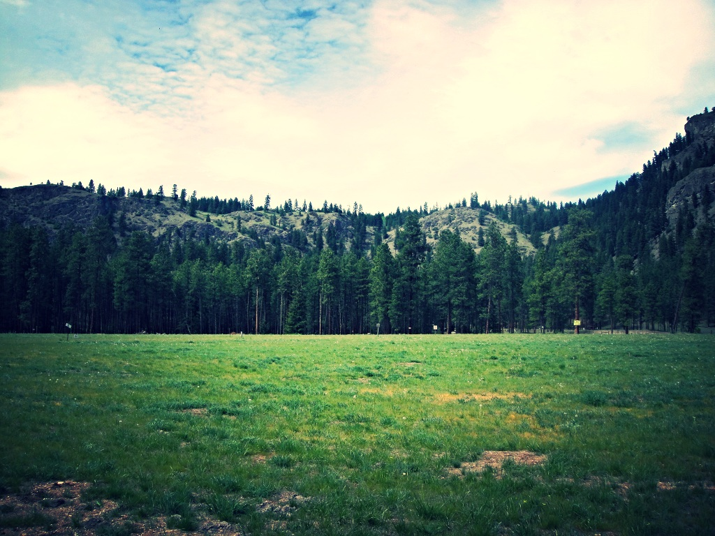 This Campground Is Shaded By Large Ponderosa Pine Trees And The Grass Always Greener